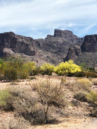 Apache Junction Residential Lots & Land For Sale: 6000 E Siesta Road