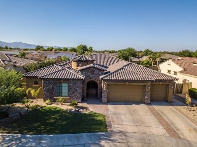 Goodyear AZ Single Family Home For Sale: $549,000