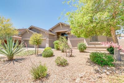 Phoenix Single Family Home For Sale: 27522 N 58th Drive