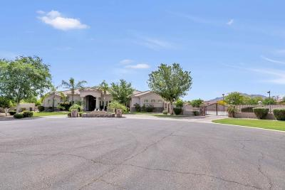 Gilbert Single Family Home For Sale: 5837 S Columbus Court