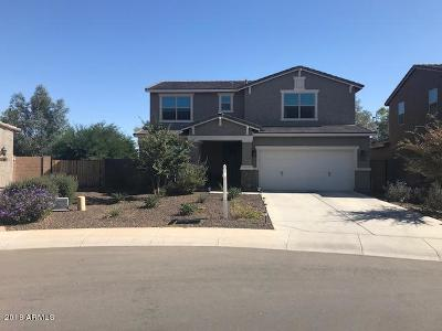 San Tan Valley Single Family Home For Sale: 42101 N Modena Road