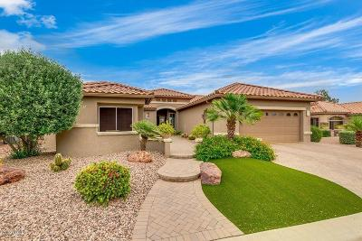 Goodyear AZ Single Family Home For Sale: $555,000