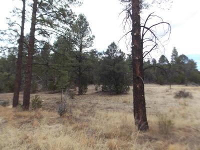 Heber AZ Residential Lots & Land For Sale: $249,900