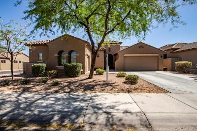Sun City Single Family Home For Sale: 11921 W Daley Lane