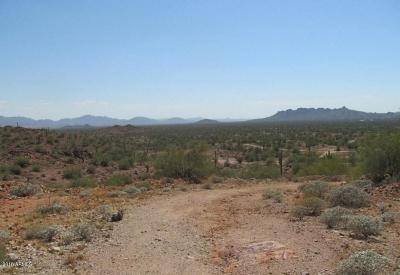 Queen Creek Residential Lots & Land For Sale: 0001 W Butte Creek Boulevard