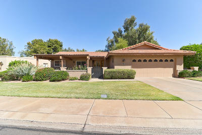 Mesa Single Family Home For Sale: 1180 Leisure World