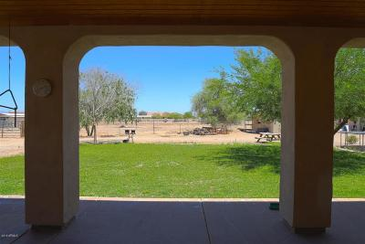 Queen Creek, San Tan Valley Single Family Home For Sale: 25421 S 194th Street