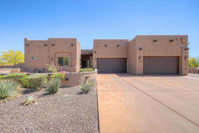 Cave Creek Single Family Home For Sale: 4243 E Ashler Hills Drive