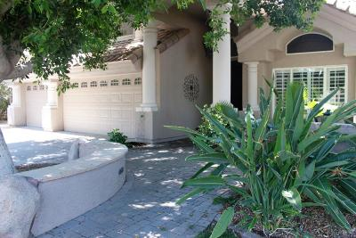 Gilbert Single Family Home UCB (Under Contract-Backups): 1410 N Cliffside Drive