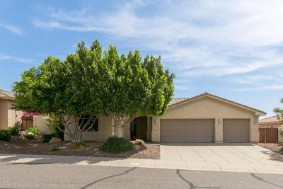 Fountain Hills Single Family Home For Sale: 13017 N Ryan Way