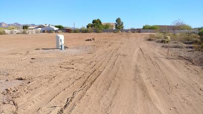 Apache Junction Residential Lots & Land For Sale: 5258 E Roundup Street