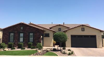 Gilbert Single Family Home For Sale: 5117 S Quiet Way