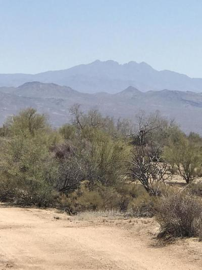 Scottsdale Residential Lots & Land For Sale: 154 E Wildcat Drive