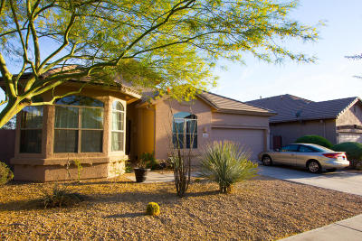 Phoenix Single Family Home For Sale: 2405 W Apache Rain Road