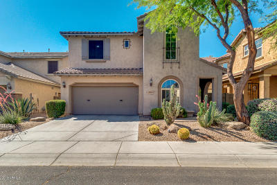 Phoenix Single Family Home For Sale: 21528 N 39th Terrace