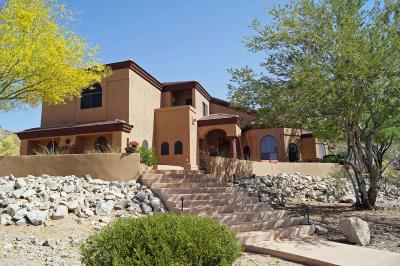 Goodyear AZ Single Family Home For Sale: $765,000