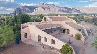 Apache Junction Single Family Home For Sale: 1091 S Geronimo Road