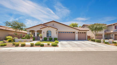 Queen Creek Single Family Home For Sale: 439 W Basswood Avenue