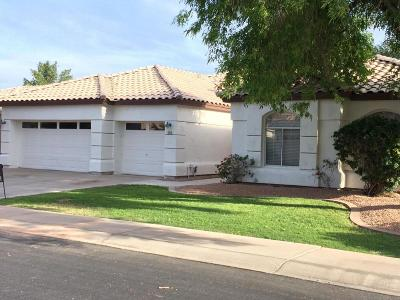 Gilbert Single Family Home For Sale: 824 W Mesquite Street