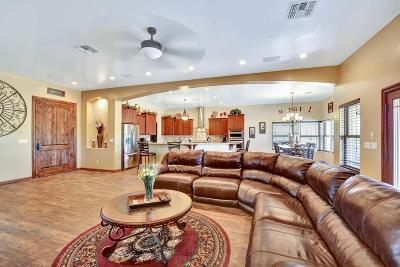 Queen Creek Single Family Home For Sale: 31696 N Mildred Road