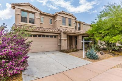 Phoenix Single Family Home For Sale: 3113 W Gran Paradiso Drive
