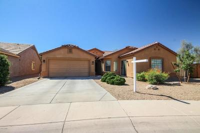 Surprise Single Family Home For Sale: 16207 N 174th Court
