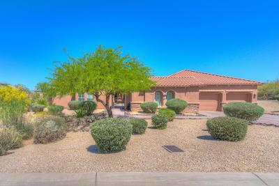 Scottsdale Single Family Home For Sale: 10876 E Volterra Court