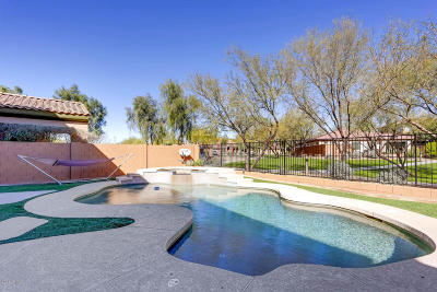 Phoenix Single Family Home For Sale: 2020 W Calle Marita