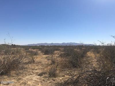 Wittmann Residential Lots & Land For Sale: N 259th Avenue