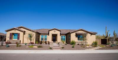 Cave Creek Single Family Home For Sale: 6112 E Calle De Pompas