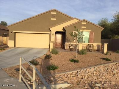 Maricopa Single Family Home For Sale: 20194 N Tammy Street