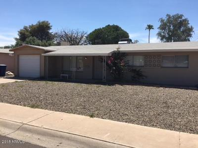 Tempe Single Family Home For Sale: 4010 S Grandview Avenue