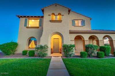 Queen Creek Single Family Home For Sale: 21525 E Camacho Road