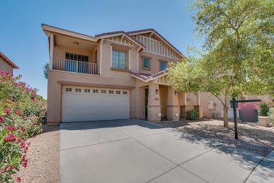 Casa Grande Single Family Home For Sale: 1367 E Colorado Loop