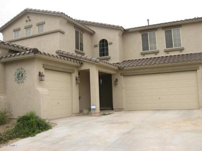 Surprise Single Family Home For Sale: 17319 W Bajada Drive
