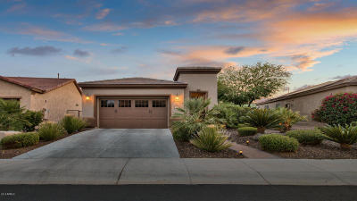 Maricopa County Single Family Home For Sale: 29114 N 129th Avenue