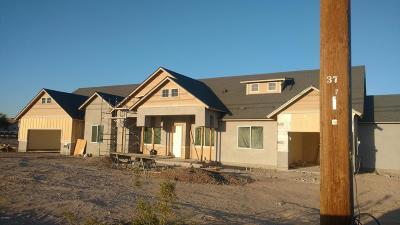 Queen Creek Single Family Home For Sale: 27849 N Gary Road