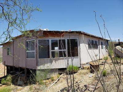 Douglas Single Family Home For Sale: 4263 E Geronimo Trail Road