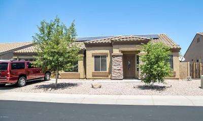 Casa Grande Single Family Home For Sale: 696 E Black Diamond Drive