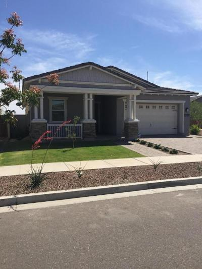 Buckeye Single Family Home For Sale: 20563 W Valley View Drive