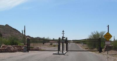 Queen Creek Residential Lots & Land For Sale: 26377 N Gent Court