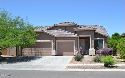 Surprise Single Family Home For Sale: 11976 N 142nd Drive