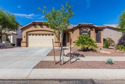 Surprise Single Family Home For Sale: 25697 N Desert Mesa Drive