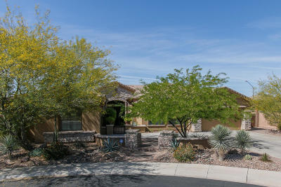 Phoenix Single Family Home For Sale: 41205 N Whistling Strait Court
