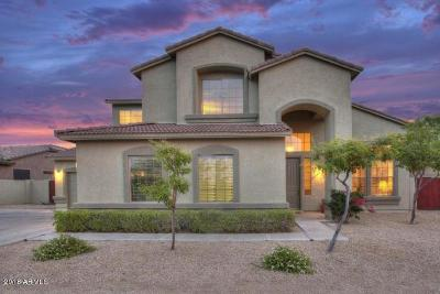 Cave Creek Single Family Home For Sale: 4417 E Happy Coyote Trail