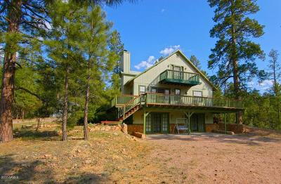 Overgaard Single Family Home For Sale: 1939 E Artists Draw