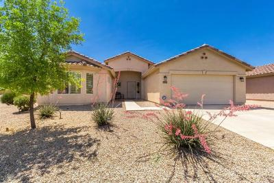 Casa Grande Single Family Home For Sale: 177 S Hancock Trail