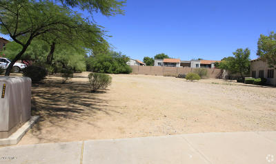 Scottsdale Residential Lots & Land For Sale: 8650 E San Alberto Drive