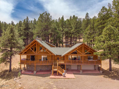 Flagstaff Single Family Home For Sale: 9405 W Hashknife Trail
