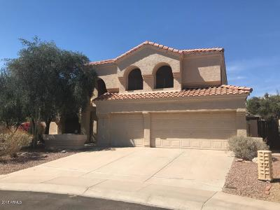 Phoenix Single Family Home For Sale: 14429 S 35th Street